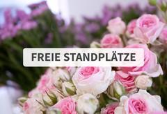 News Freie Standplätze für den Rosenmarkt